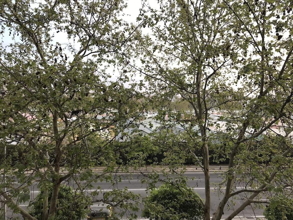 vista desde mi ventana desde la cuarentena en Sevilla